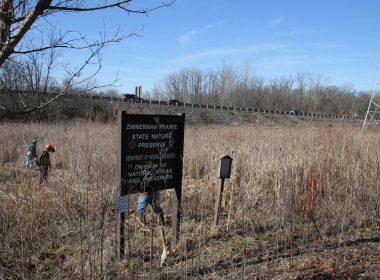 Zimmerman Prairie State Nature Preserve - 2018 IMG_2057