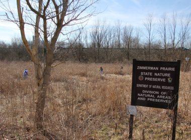 Zimmerman Prairie State Nature Preserve - 2018 IMG_2071